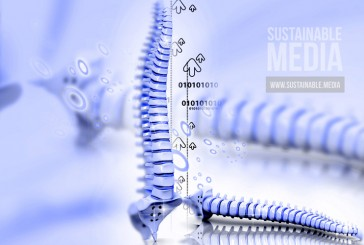 3D Printed Vertebrae Implant