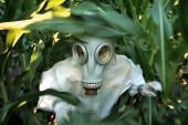 "Monsanto Asks World Health Organization To ""Retract"" Cancer Link"