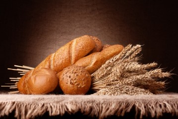 GMOs Links to Exploding Gluten Sensitivity Epidemic