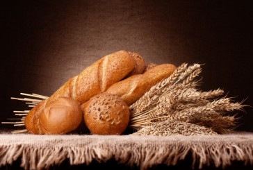 GMOs Links to Exploding Gluten Sensitivity Epidemic