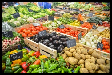 The Whole Food, Plant-based Nutrition Extended Time With My Love